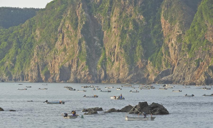 ウニ漁風景