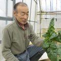田野畑村のおいしい!を育む「やまのひと。」 vol.12〜 農家・畠山陸司さん